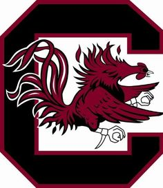 South Carolina Fighting Gamecocks